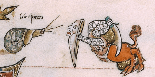 fighting tooth and snail
