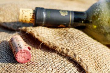 Historia i cywilizacja wina