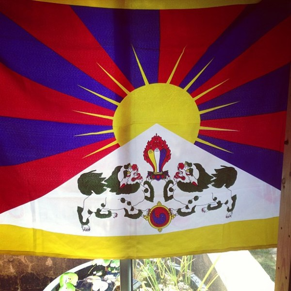 https://www.studentsforafreetibet.org/campaigns/political-action/uprising-day