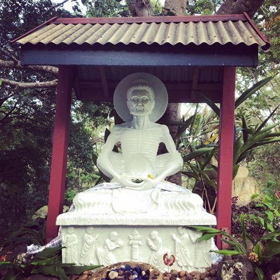 New Buddha