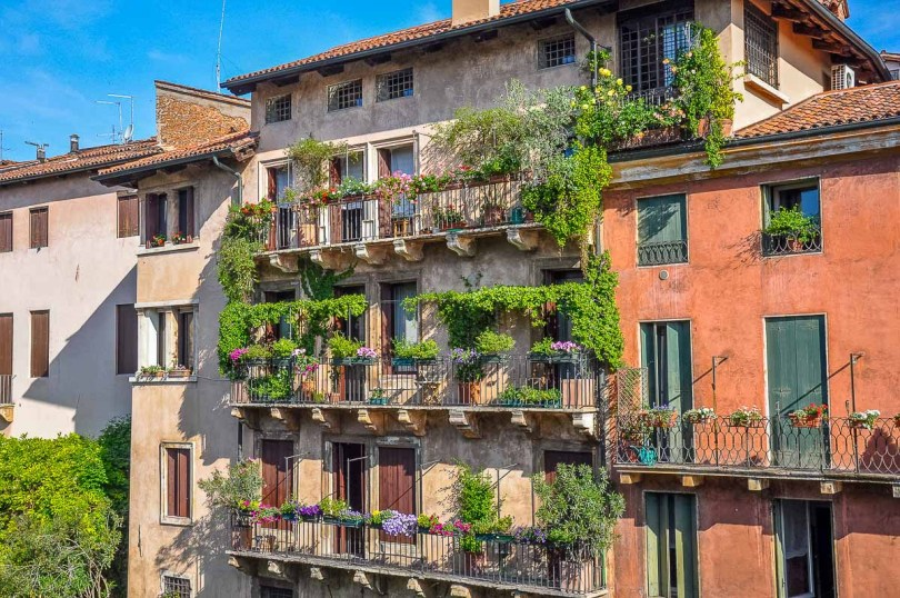 Italian balconies with small gardens and creeper plants - Vicenza, Italy - rossiwrites.com