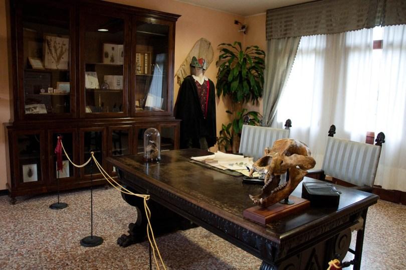 Antonio Berlese's study, Esapolis, Padua, Veneto, Italy - www.rossiwrites.com