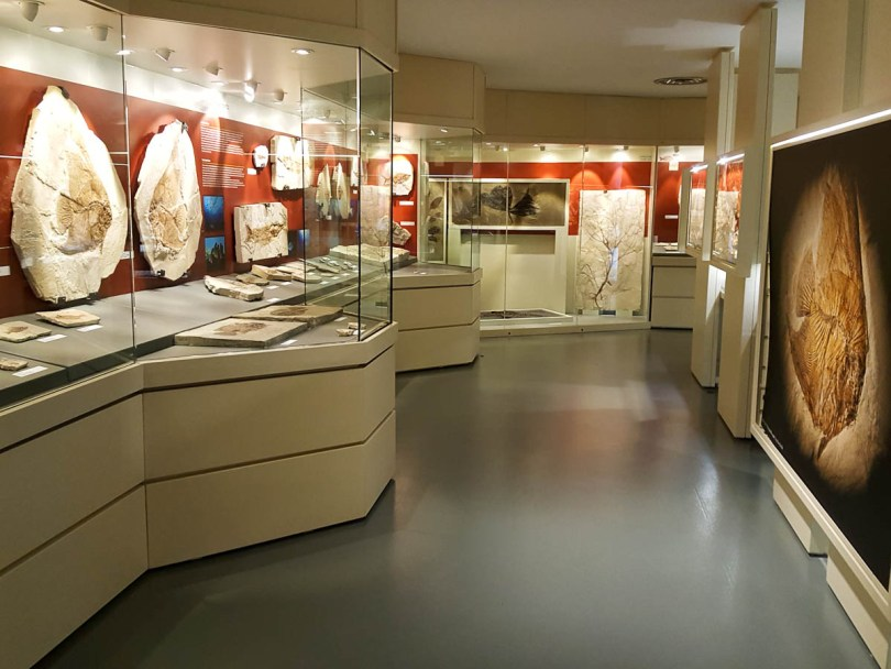 The Fossil Museum, Bolca, Province of Verona, Italy - www.rossiwrites.com