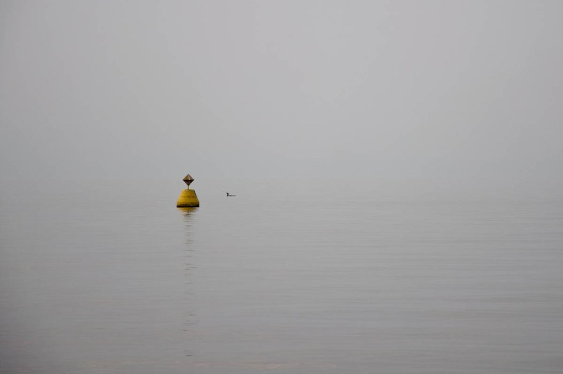 A bouy and a duck - Lazise, Lake Garda, Italy - www.rossiwrites.com