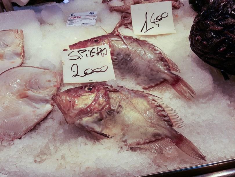 Spiero fish - Rialto Fish Market, Venice, Italy - www.rossiwrites.com