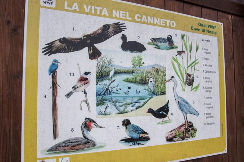 A sign showing the birds which can be seen in the park - Oasi WWF, Cave di Noale, Veneto, Italy - www.rossiwrites.com