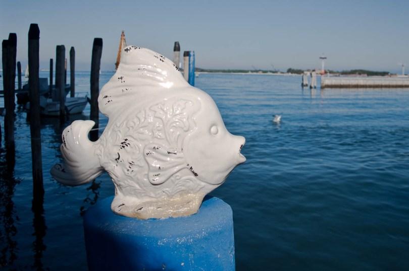 Ceramic fish - Chioggia, Veneto, Italy - www.rossiwrites.com