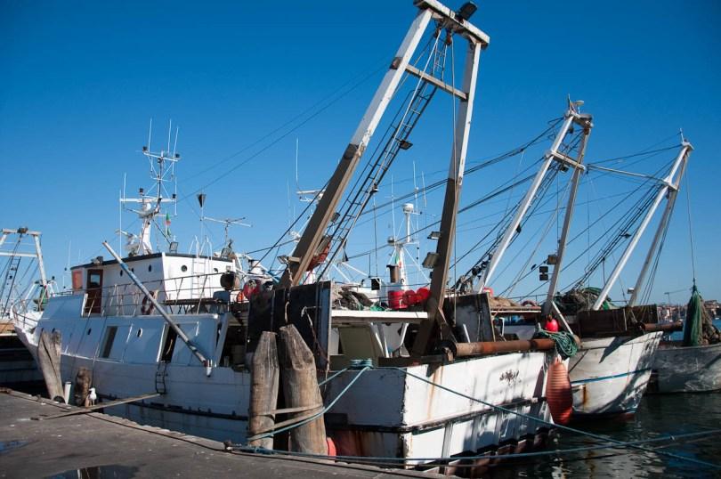 Fishing boats - Chioggia, Veneto, Italy - www.rossiwrites.com