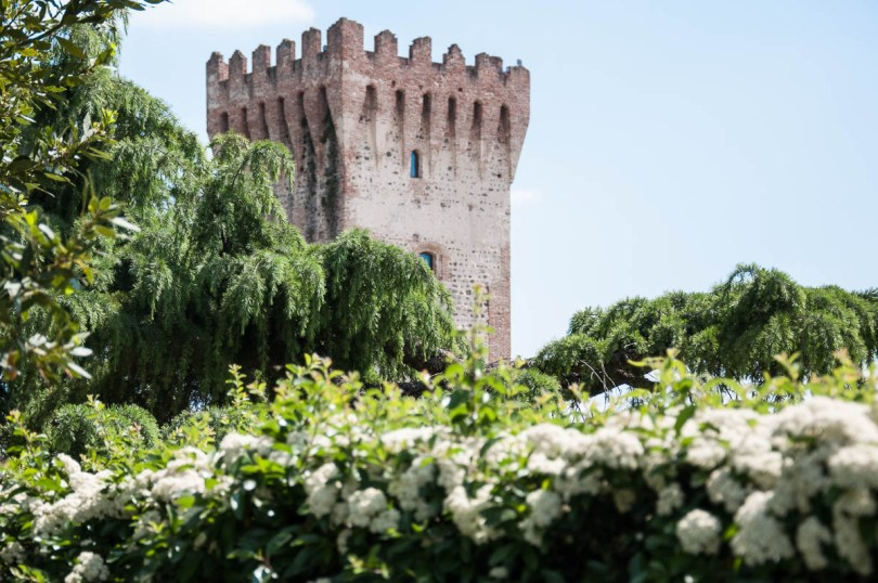 A defensive tower with blooming bushes - Carrarese Castle, Este, Veneto, Italy - www.rossiwrites.com