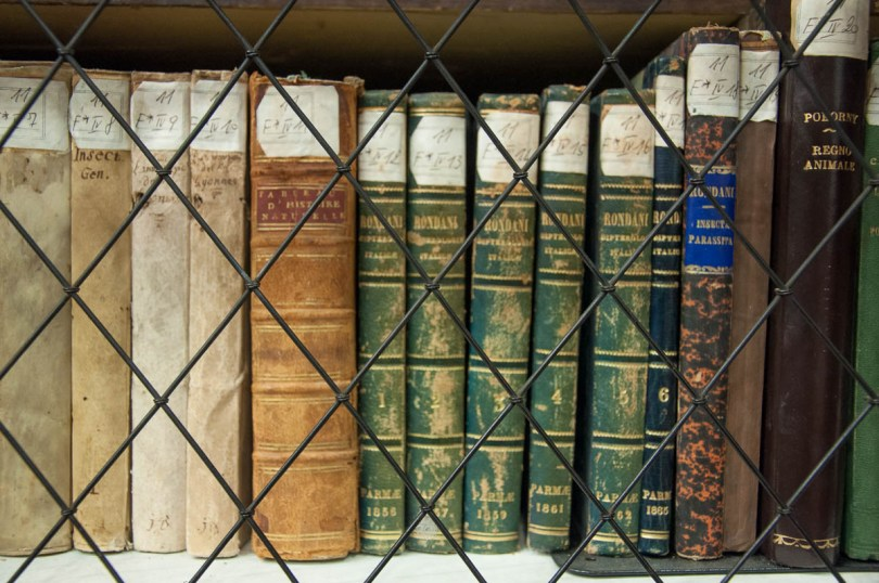 The centuries-old books in Stabat Mater Hall - Bologna University - Bologna, Emilia-Romagna, Italy - www.rossiwrites.com