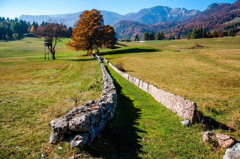 The path with the Dolomites at the background - Excalibur, Tonezza del Cimone, Veneto, Italy - www.rossiwrites.com