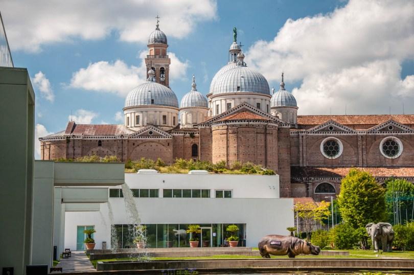 The Basilica of Santa Giustina seen from Padua University Botanical Gardeni - Padua, Italy - rossiwrites.com