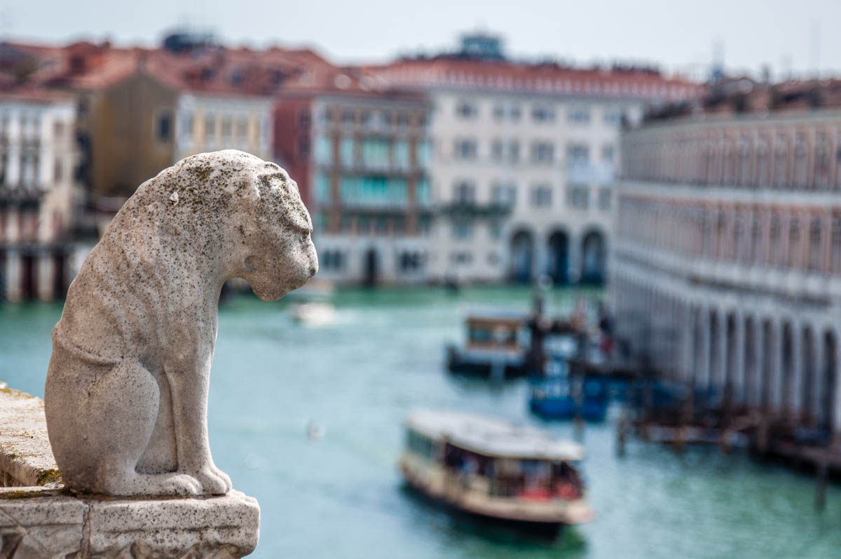 The lion with the best view of the Grand Canal - Venice, Italy - rossiwrites.com