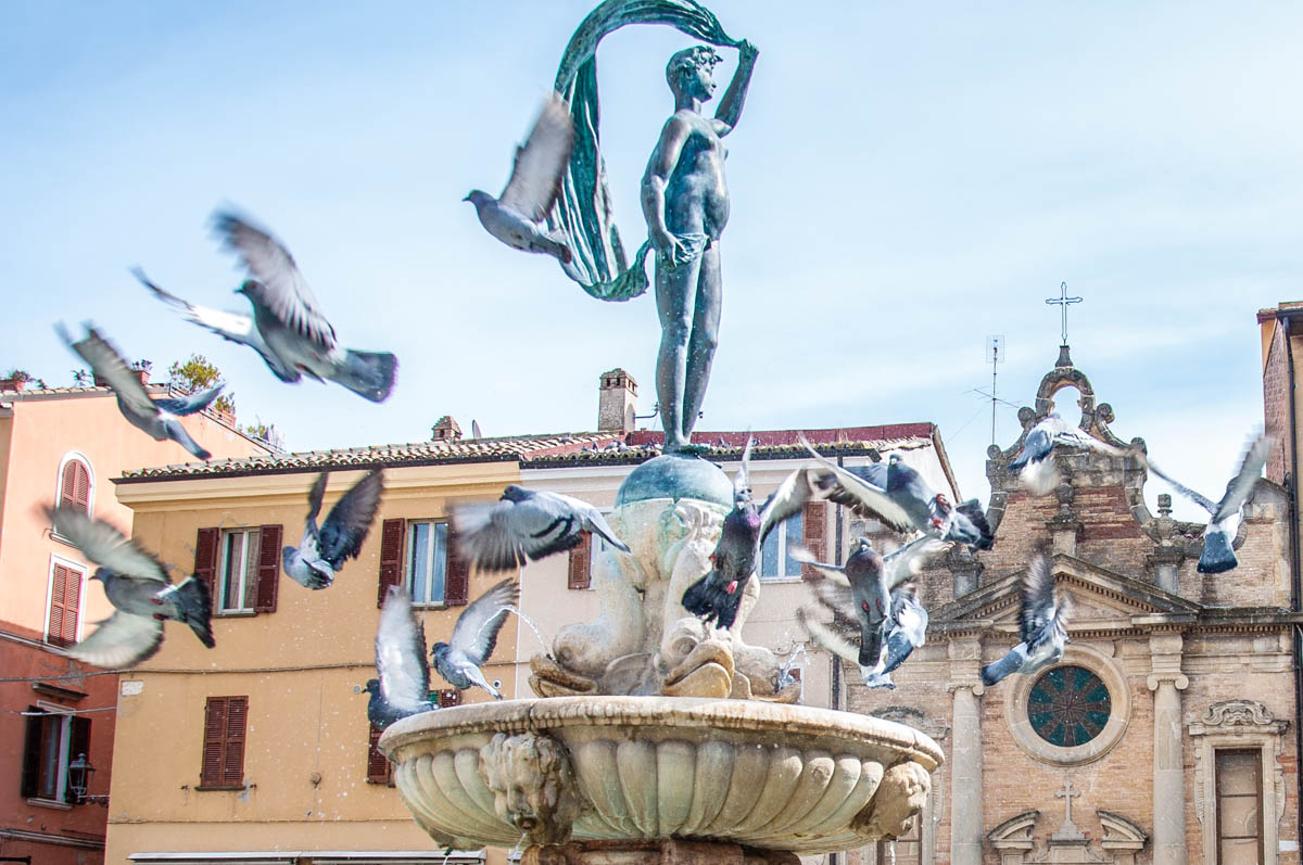 Pigeons flying off a fountain - Fano, Marche, Italy - rossiwrites.com