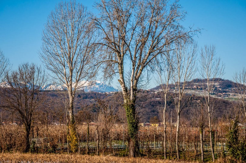 View of the mountains from the Quartiere di Maddalene - Vicenza, Veneto, Italy - rossiwrites.com