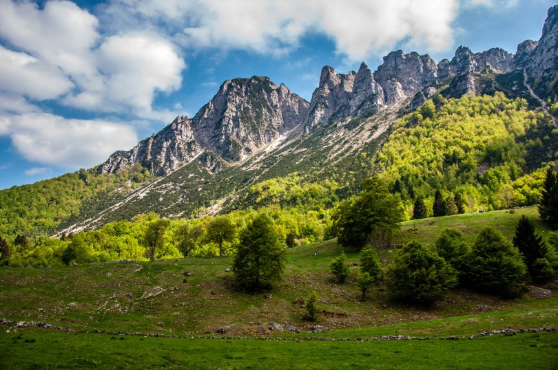 The green meadows and rocky peaks of the Little Dolomites - Sentiero dei Grandi Alberi - Province of Vicenza, Veneto, Italy - rossiwrites.com