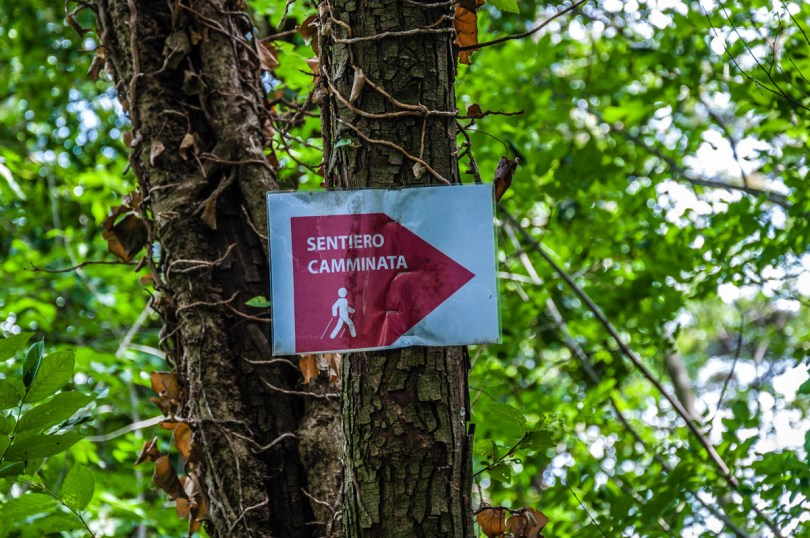 A sign pointing the path forward - Rocca di Garda, Lake Garda, Italy - rossiwrites.com