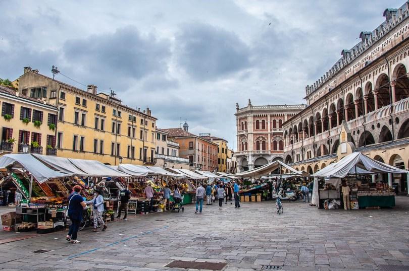 Piazza delle Erbe with the daily market and Palazzo della Ragione - Padua, Veneto, Italy - rossiwrites.com