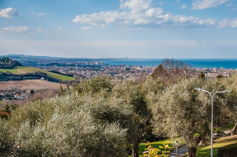 The olive grove with the view from the hilltop - Gradara, Italy - rossiwrites.com
