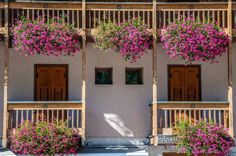 Balconies dripping with blooming flowers in Fiera di Primiero - Trentino, Italy - rossiwrites.com