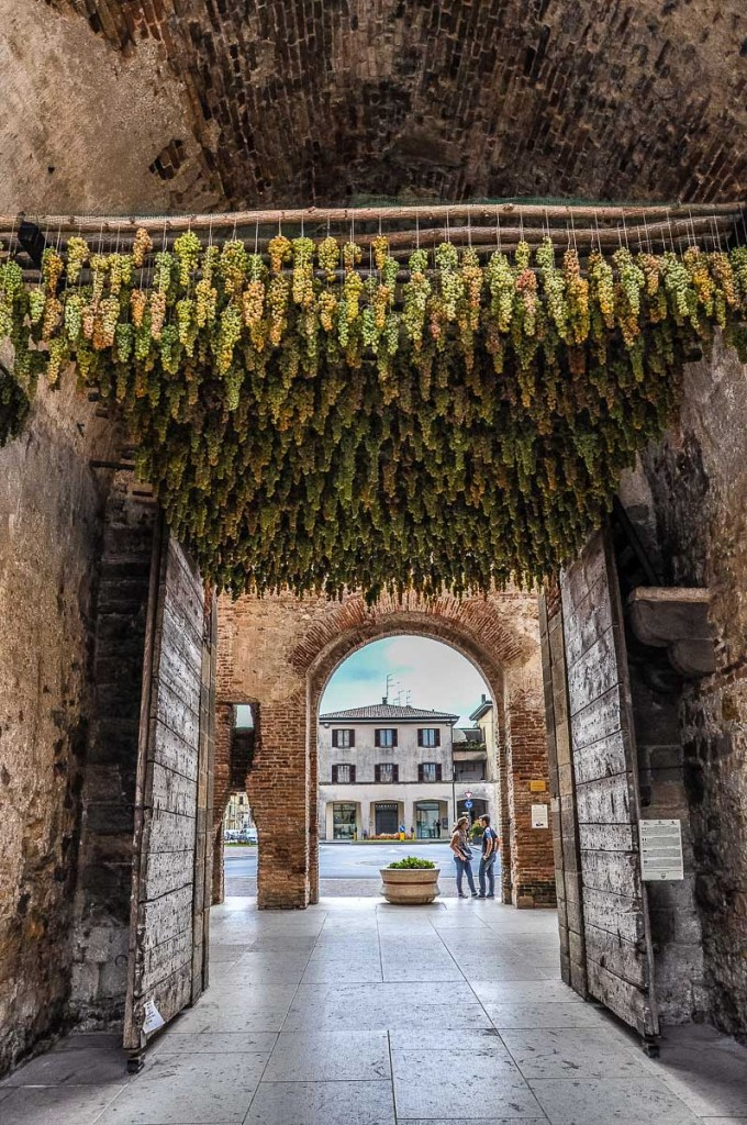 A medieval gate decorated with bunches of grapes for the Festa dell'Uva in the town of Soave - Veneto, Italy - rossiwrites.com