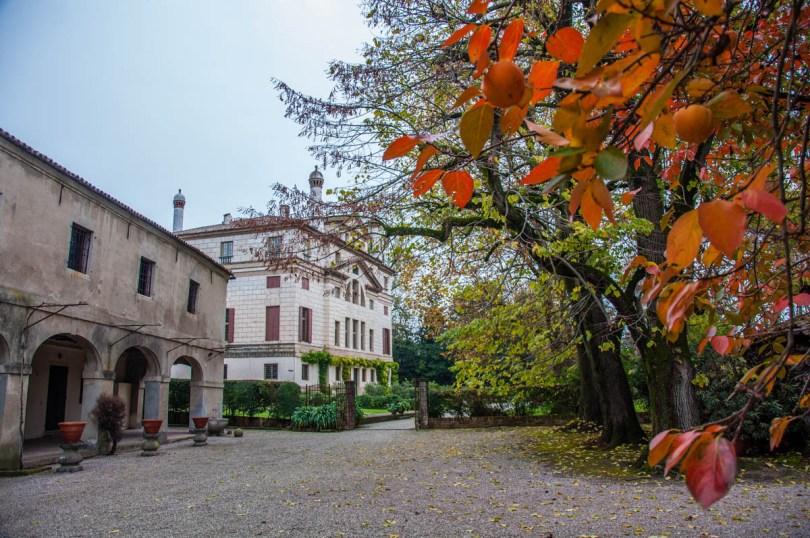 View of Villa Foscari La Malcontenta with sharon fruits - Mira, Veneto, Italy - rossiwrites.com