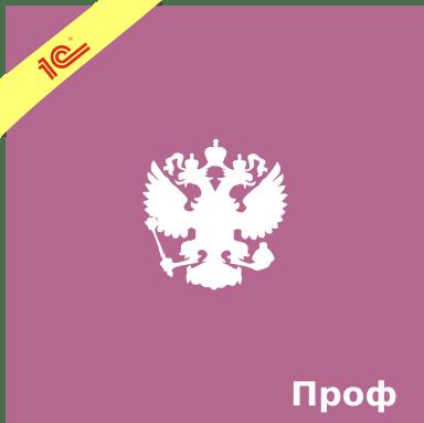 1С Документооборот государственного учреждения ПРОФ