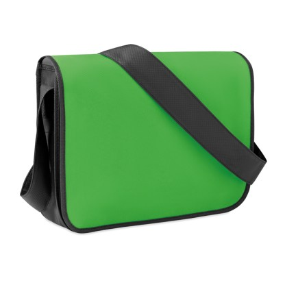 Non-woven document bag