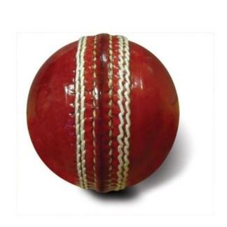 printed cricket balls