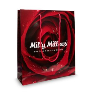Exhibition laminated paper gift bag