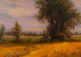 Cottonwoods and Prairie Flowers 30x40, Mary Pettis