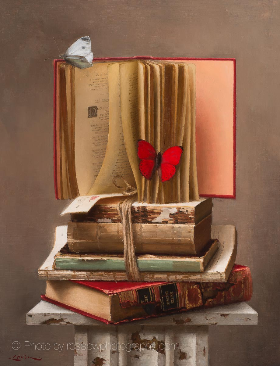 Artwork Photography of Books-160607-Steve Levin