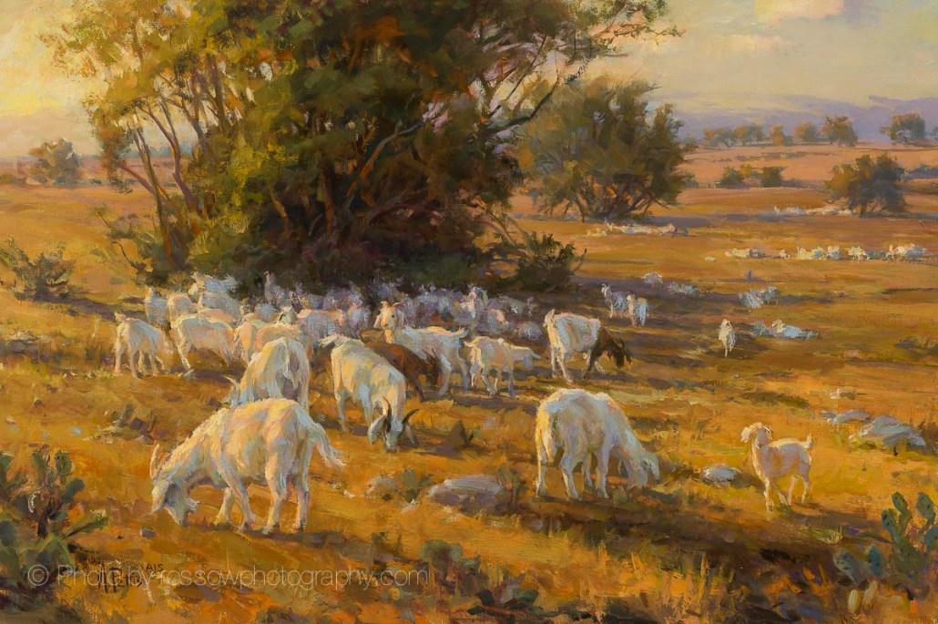 Goats Glow 16x24