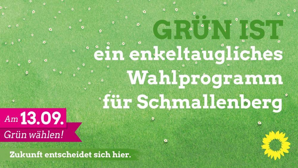 Das Wahlprogramm der GRÜNEN in Schmallenberg HIER ZUM DOWNLOAD!
