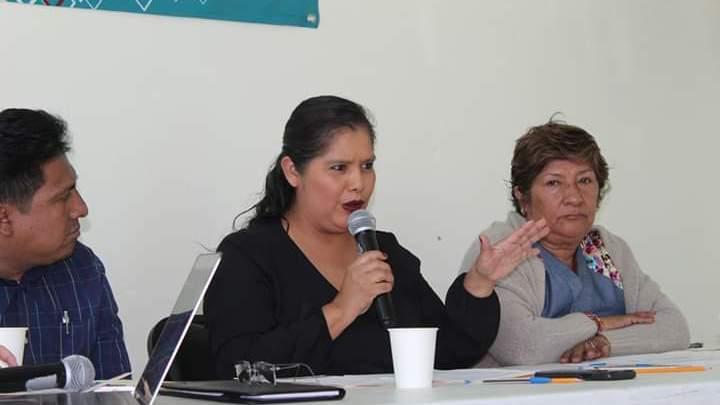 «Revisaremos en qué se gastó cada peso de los y las oaxaqueñas»: Diputada Laura Estrada