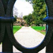 green garden park italy looking future reflection neogeneralist leadership innovation work learning rotana ty