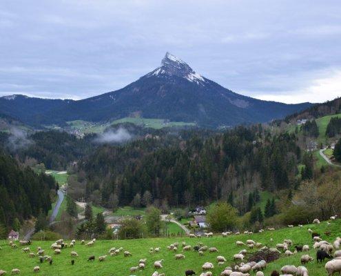 visual thinking valley mountain hiking rotana ty