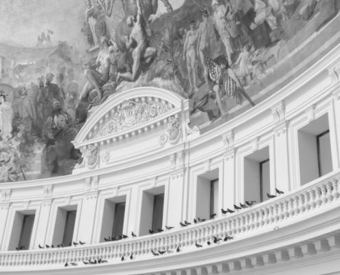 se réunir art of gathering birds grey museum bourse commerce