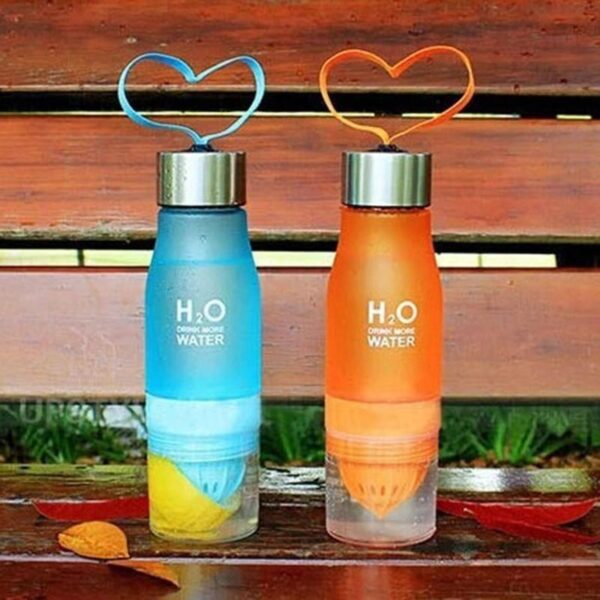 H2O FRUIT INFUSER WATER BOTTLE
