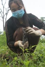Mega Tree Plantation Programme RAC DHARAN GHOPA (3)