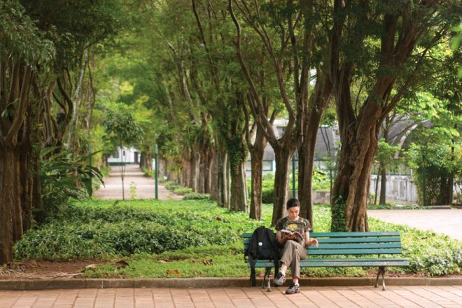 Within Ibirapuera Park, you'll find paths for strolling, benches for reading, and São Paulo's modern art museum.