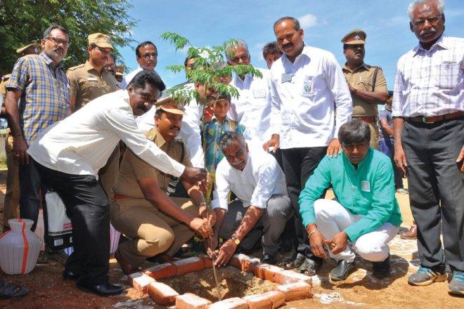 30,000-saplings-in-a-single-day