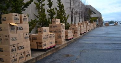 Early Thursday morning, 530 boxes filled with food for needy families were lined up in front of the old Belk store off Rus Avenue awaiting delivery. Photo: Vicki Hyatt