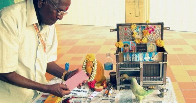 Parrot-Fortune-Teller-in-Little-India-Photo-Credit-to-Benjamin-Disraeli
