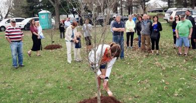 Val Claycomb puts a marker into place showing the dogwood tree is dedicated to the memory of Elizabethtown Rotary Club member and community activist Hans Marsen at Freeman Lake Park. Photo: Neal Cardin/The News-Enterprise