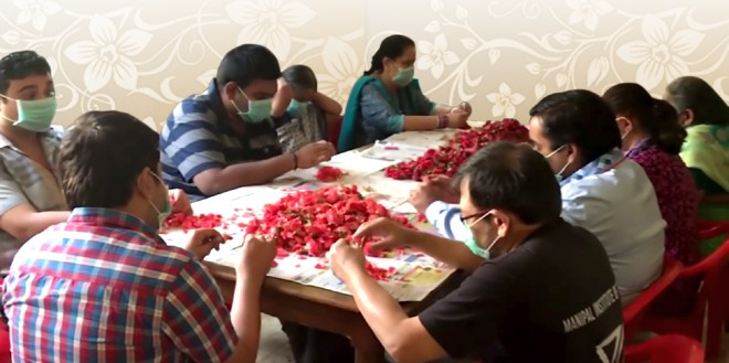 Flowers being de-petalled by the patients.