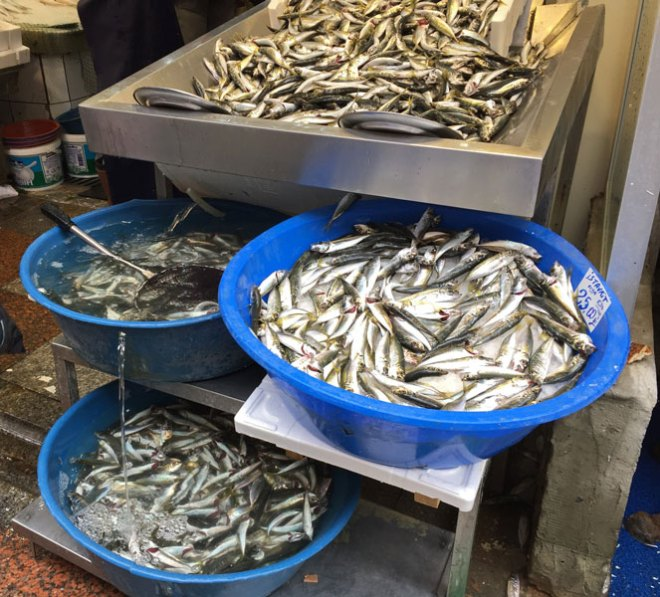 Fish-is-kept-with-flowing-water-to-keep-it-fresh