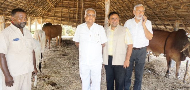 PDG Abirami Ramanathan at a goshala along with Ravi Kumar and RC Madras Central past president Dr Manoj Rajan (centre).
