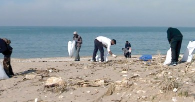 Workers gather refuse at a cleanup event led by Plastic Beach.