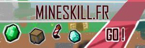 mineskill partenaires blog